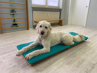 Physiotherapie_Tirschenreuth_Marlon